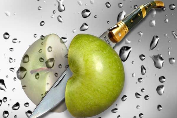 Pourquoi les pommes peuvent-elles être consommées toute l'année?