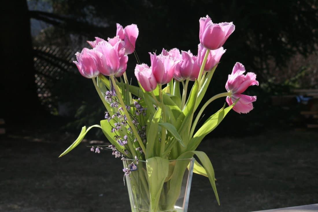 Quelle est la signification des fleurs?